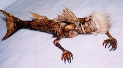 ugly dead tsunami mermaid